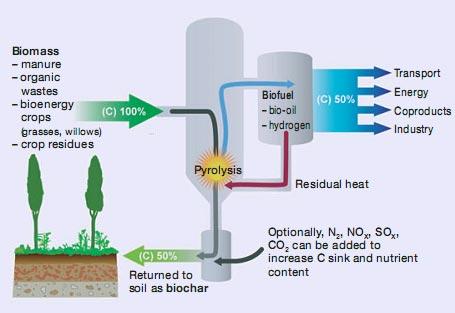 biochar-chart.jpg
